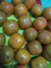 秋天的柿子好吃也要少吃