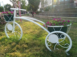 美丽的自行车花篮