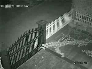 澳门威尼斯人娱乐场网址开发区东方花园昨夜被盗多家,案值巨大,全网协查!