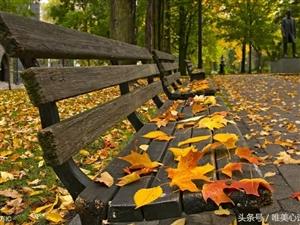 爱在深秋,秋意正浓