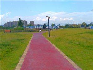汉中这里环境好,散步舒坦。(手机摄影)