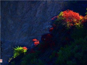 《建平的喀纳斯》建平喀纳斯?一个秋天没有下雨,也没有刮风,成了一个,被拉长的秋天