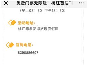 朋友圈的桃江花海不要约了,位置在湖南省