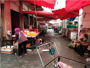 云南镇雄县部分地区猪瘟后,各大菜场无猪肉出售……