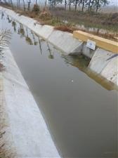 水利工程发挥作用。
