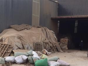 大量收��U板材,木屑等!