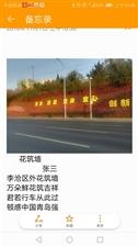 李沧区外鲜花墙