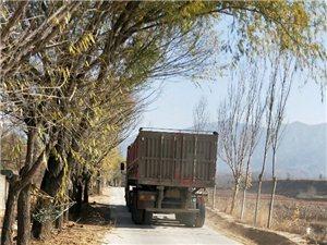 农民的扶贫路成了某厂矿的致富路