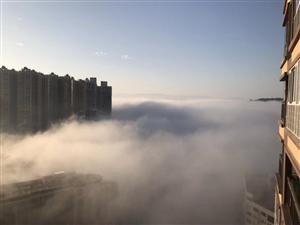 今早的合江城,是不是神仙驾到了