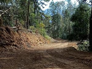富饶村尖刀班的故事:通往大山里面的发展路