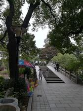 散步,行走在南昌市的人民公园