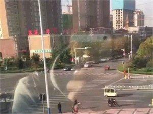 11月7日,滨州黄河十路与渤海十一交叉口,小青年随地小便!