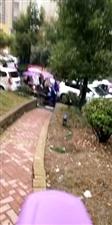 旭日尚城一早小区居然堵车了!!!,我都不知道这物业是干什么的!那场面那叫一个车水马龙,堪比光明大道!