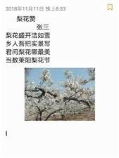 莱阳梨花节