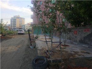 漳浦�h一公��T��y添霸占村民土地��打��l�