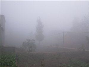 雾大,小心出行