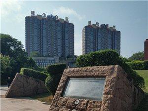 惠州东平公园榕树赞
