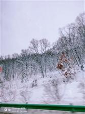 美丽桦南雪景