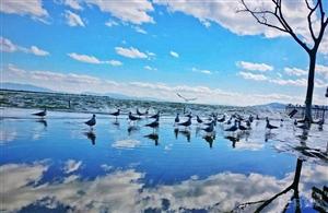 冬季到来,想找个暖和地方出游放松,可以来找我哟。