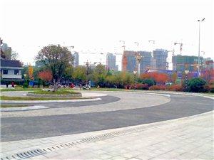 白渡广场(手机随拍)