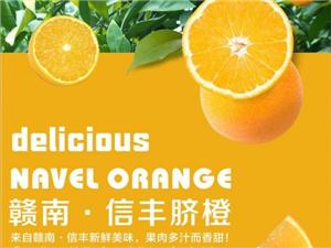 �M南信�S�橙