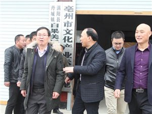 涡阳:16日上午,国家和省发改委到涡阳县青年泗州戏剧团进行调研
