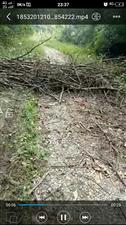 毁坏村名公路
