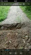 十多年前几户村名协商建好的一条公路,当时协商没有要土地或钱款补,但是现在一户村名后悔了要补偿,而且还