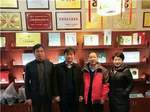 插上腾飞的翅膀狗亚体育ios版金桥茶业迎来北京专家