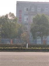 """南京江北新区中山园区的""""景区""""食堂"""