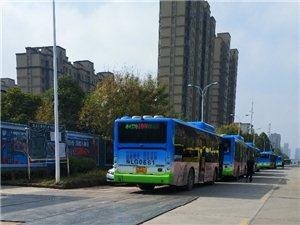 公交车乱停乱放