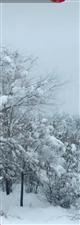 冬天,大雪纷飞,你想看美,还是想窝在烤火炉旁边吃着休闲小零食,登娃食品,不管你在何地,一直在你身边