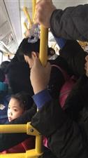 挤合江公交车