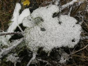 要过年了!松桃下雪了!