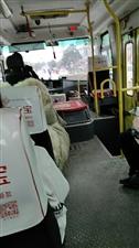 光山凉亭公交车可以乱收费吗?