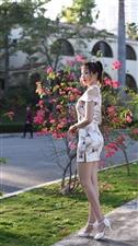 珠海摄影家协会年会在珠海度假村酒店举行,当天还组织了摄影活动
