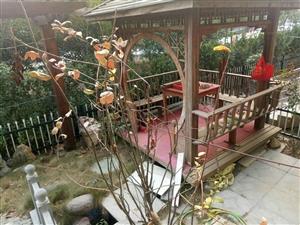 现出售金秋华城130平方房子一套,一楼带院