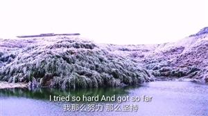 雪后红石林