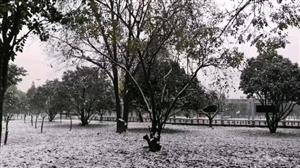 天晴了雪停了