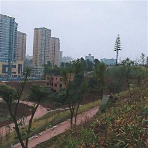 富顺北湖公园