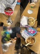 临泉县靖波高中强制学生在校内食堂吃饭