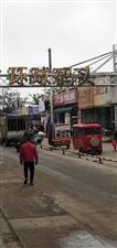 参观海南省文昌市清澜球�a头海鲜产品繁荣的市场掠影2018年12月14日我和琼海市陈
