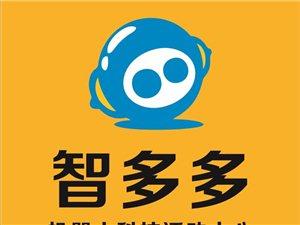 智多多机器人科技活动中心来澄县啦