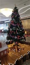 话说:�}�Q节每年的�}�Q节12月25日(农历十一月十九),中国的香港、澳门在一个月前己进入了布