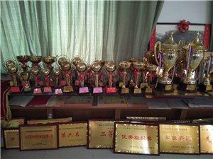 冠军之校,二十年为?#19981;?#30465;,阜阳市,临泉县,争光,获奖