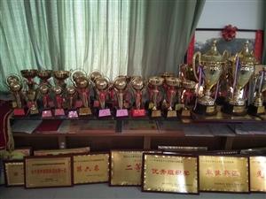 冠军之校,二十年为安徽省,阜阳市,临泉县,争光,获奖