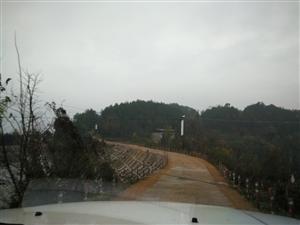 石马秧田村风景