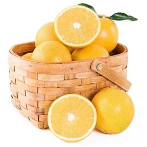 褚橙正品有售原产地直供