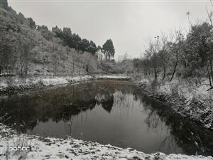 龙泉山上的第一场雪!