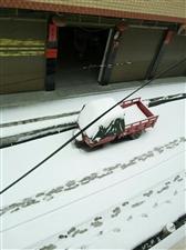 《品*雪》